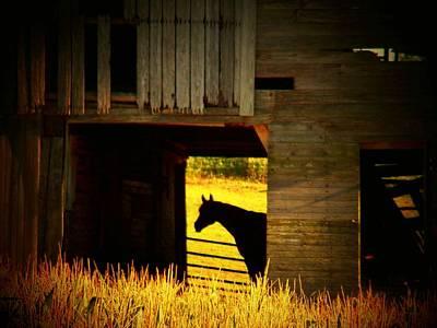 Horse In The Barn Art Print by Joyce Kimble Smith