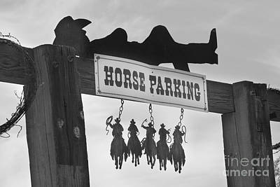 Photograph - Horse Parking by James BO  Insogna