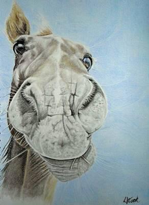 Horse Play Original