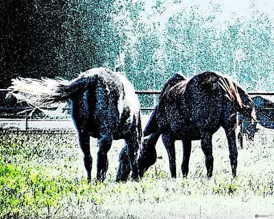 Digital Art - Horse Tails Color Splashed by Lizi Beard-Ward