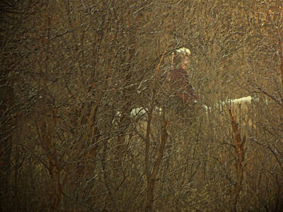 Spiritual Portrait Of Woman Photograph - Horseback In The Garden by Lenore Senior