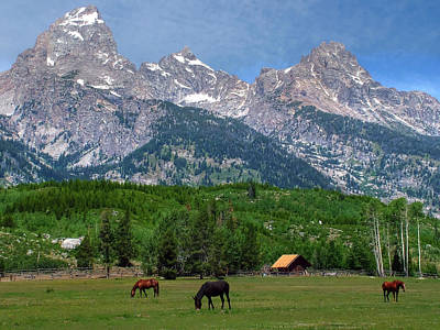 Photograph - Horses Grazing Near The Tetons by Ken Smith