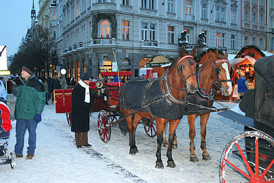 Photograph - Horses In Prague by Leontine Vandermeer