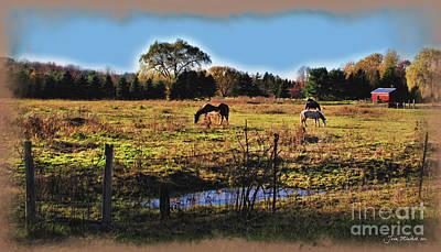Photograph - Horses In Richfield by Joan  Minchak