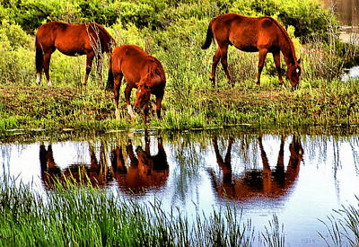 Horses Mirrored Art Print by Kristin Elmquist
