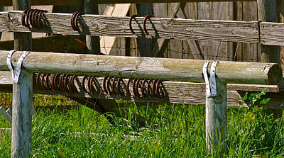 Photograph - Horseshoes by Bill Owen