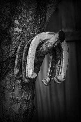 Horseshoes Art Print