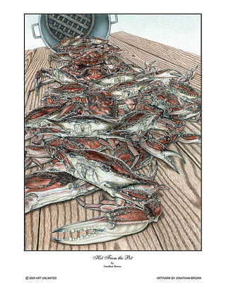 Blue Crab Drawing - Hot From The Pot by Jonathan W Brown
