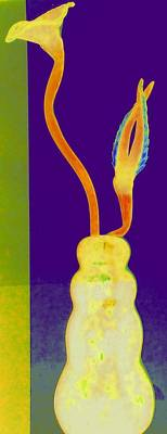 Photograph - Hot Glass 48 by Randall Weidner