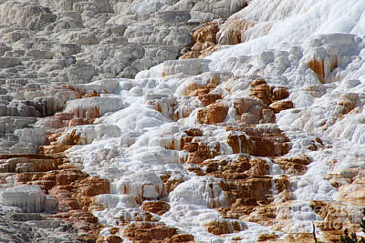 Hot Spring Mineral Deposit Texture Art Print by Adam Long