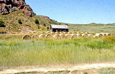 Photograph - House And Hay Bails by James Steele