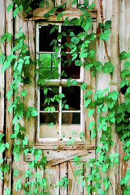 Photograph - House At Kudzu Korner by Michael Flood