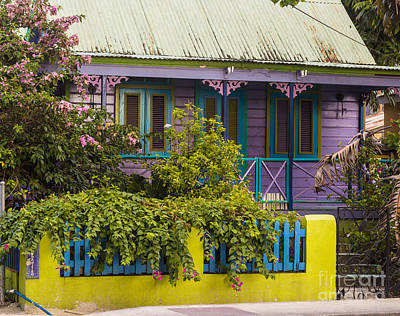 Photograph - House Of Colors by Rene Triay Photography