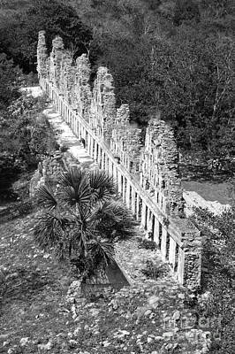 Photograph - House Of The Doves At Uxmal Mexico Black And White by Shawn O'Brien