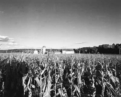 How Corny Original