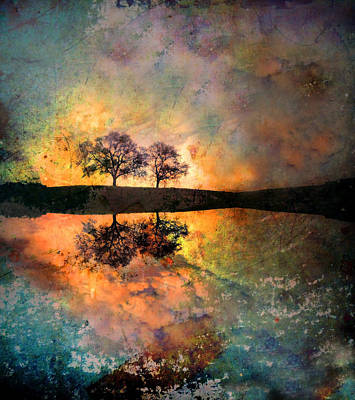 Photograph - How Trees Reinvent The Morning by Tara Turner