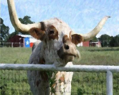 Photograph - Howdy From Texas by Donna G Smith