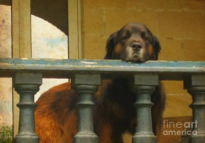 Briex Mixed Media - Hug Dog by Nop Briex