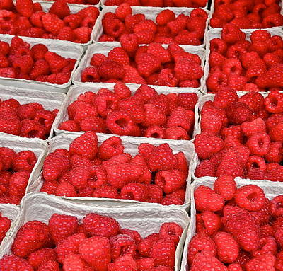 Photograph - Huge Red Raspberries by Kirsten Giving