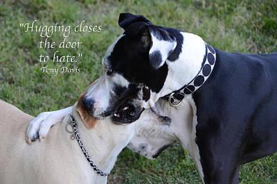 Buy Dog Art Photograph - Hugging by Steven  Michael