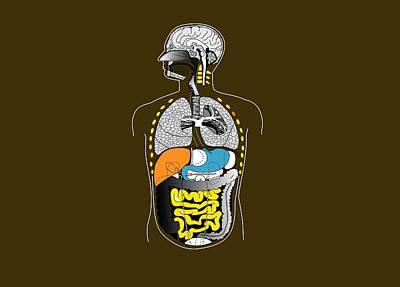 Human Internal Organs, Artwork Art Print by Francis Leroy, Biocosmos