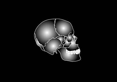 Human Skull Anatomy, Artwork Art Print by Francis Leroy, Biocosmos