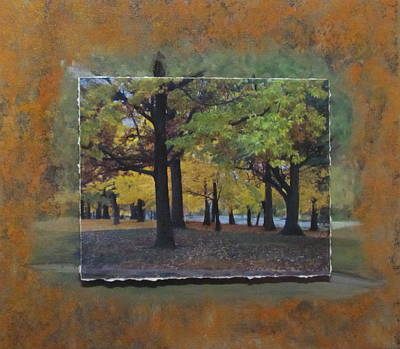 Mixed Media - Humboldt Park Trees Layered by Anita Burgermeister