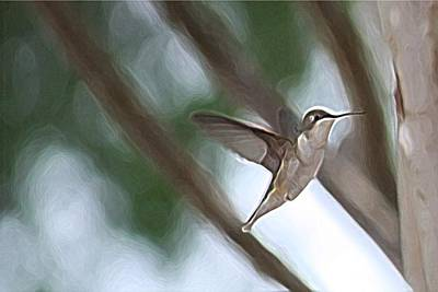 Art Print featuring the photograph Hummingbird by Donna  Smith