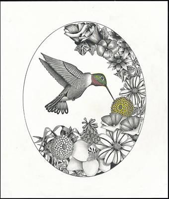 Hummingbird In Flight Art Print by Bryan Austerberry