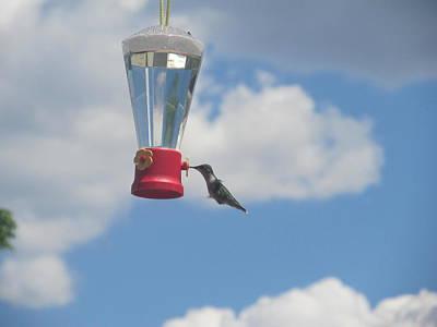 Keith Richards - Just A Hummingbird by Tina M Wenger
