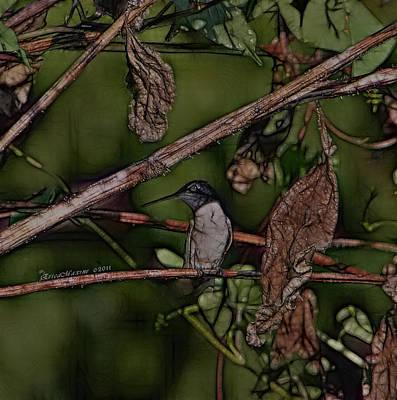 Hummingbird Waiting For Dinner Art Print by EricaMaxine  Price