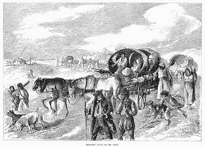 Gypsy Wagon Photograph - Hungarian Gypsies, 1874 by Granger