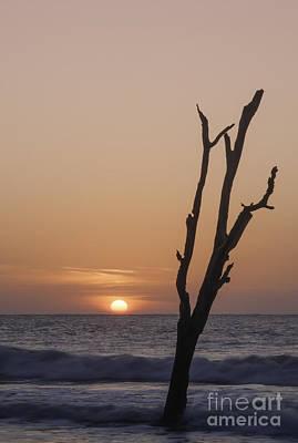 Photograph - Hunting Island Sunrise by David Waldrop