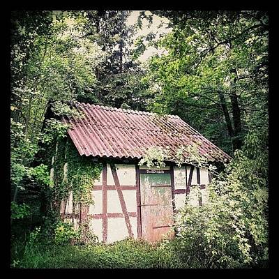 House Photograph - Hut In The Forest by Matthias Hauser