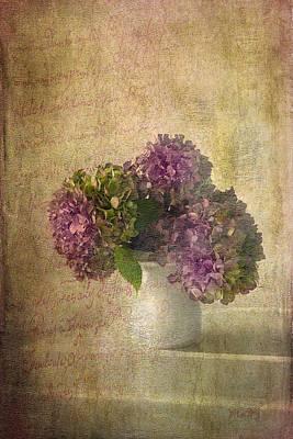 Hydrangea Blossoms Art Print by Michael Petrizzo