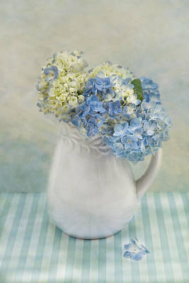 Photograph - Hydrangea Morning by Robin-Lee Vieira
