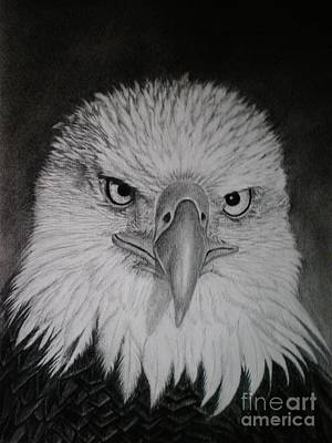 Drawing - I Am Watching You by Paula Ludovino