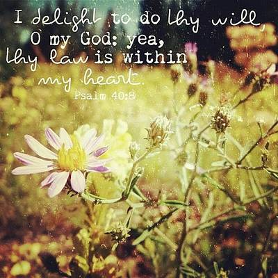 Inspirational Photograph - i Delight To Do Thy Will, O My God: by Traci Beeson
