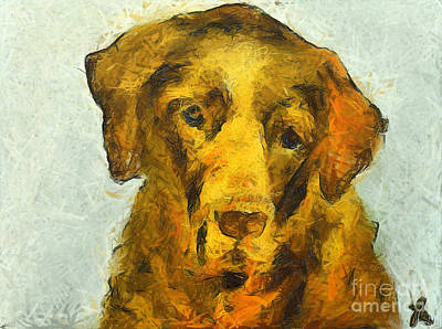 Dog Painting - I Know I Am Old by Dragica  Micki Fortuna
