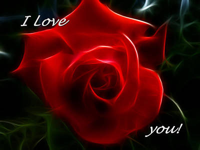 Photograph - I Love You Red Rose by Cindy Wright