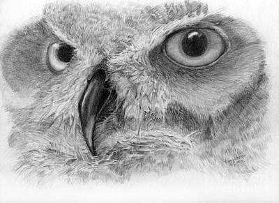 Great Horned Owl Drawing - I See You by Peggy Covic