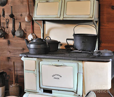 Photograph - I Want A Stainless Steel Stove by Nancy Greenland