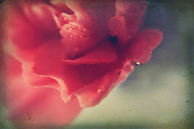 Pink Flower Digital Art - I Wonder If You Ever Miss Me by Laurie Search