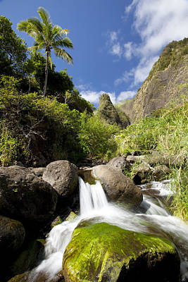 Photograph - Iao River Valley Scene by Jenna Szerlag