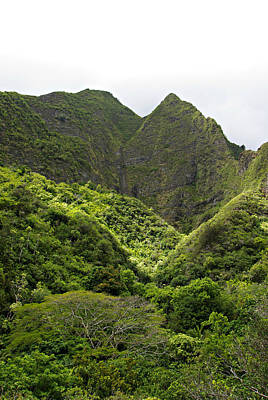 Photograph - Iao Valley Mountains by Marilyn Wilson