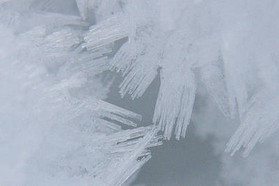 Photograph - Ice - 0028 by S and S Photo