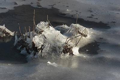 Ice And Salt Marsh Grasses Art Print by George Grall