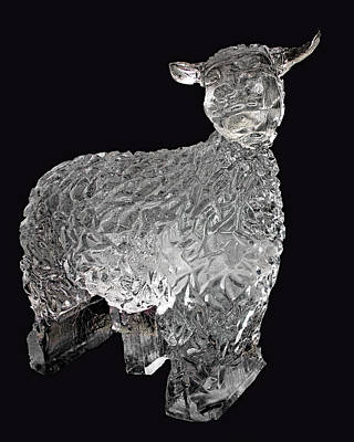 Photograph - Ice Cold Lamb Carved In Ice by LeeAnn McLaneGoetz McLaneGoetzStudioLLCcom