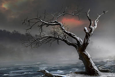 Ice Floes Art Print by Igor Zenin