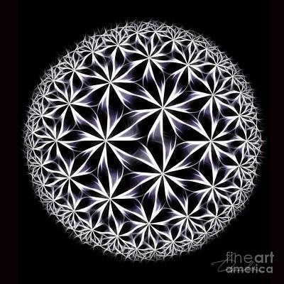 Digital Art - Ice Flowers by Danuta Bennett
